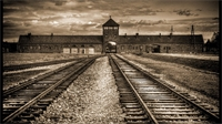 Libération d'Auschwitz: témoignages de survivants