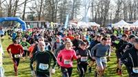 Du sport, mais pas seulement : le Trail des Terroirs Vosgiens !