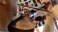 Une semaine musicale dans les Vosges et à Mirecourt